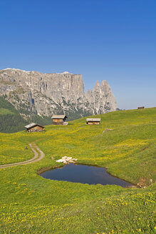 Italy, South Tyrol, Seiser Alm with wooden huts and Schlern group in the background - UMF000724