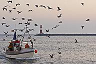 Germany, Mecklenburg-Western Pomerania, Warnemuende, Fishing boat, Lighthouse in the background - MEL000024