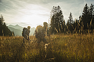 Austria, Tyrol, Tannheimer Tal, young couple hiking in sunlight on alpine meadow - UUF002208