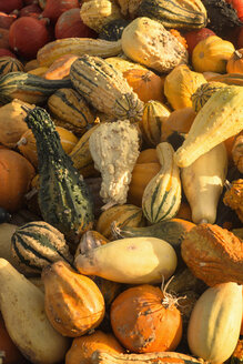 Pile of decorative gourds at market stall - OPF000019
