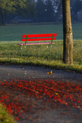 Germany, Red bench in autumn - JTF000579