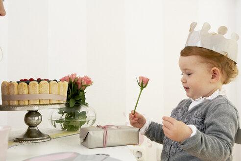 Little girl's first birthday - FSF000252