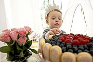 Little girl's first birthday - FSF000234