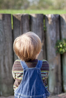 Little girl waiting in front of wooden fence, back view - JFEF000469