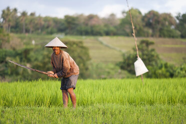 Indonesia, Bali, man working in the field - NNF000059