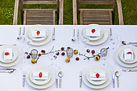 Autumnal laid table in garden - WDF002729