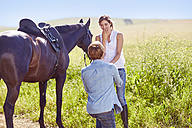 Young couple with horse on the countryside - ZEF001703