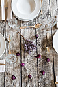 Autumnal laid table - LVF002086