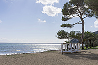 Spain, Balearic Islands, Mallorca, Canyamel, Beach and sunbeds - HLF000755