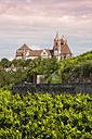 Germany, Baden-Wuerttemberg, Breisach, Eckartsberg vineyard and Breisach Minster in the background - WIF001129