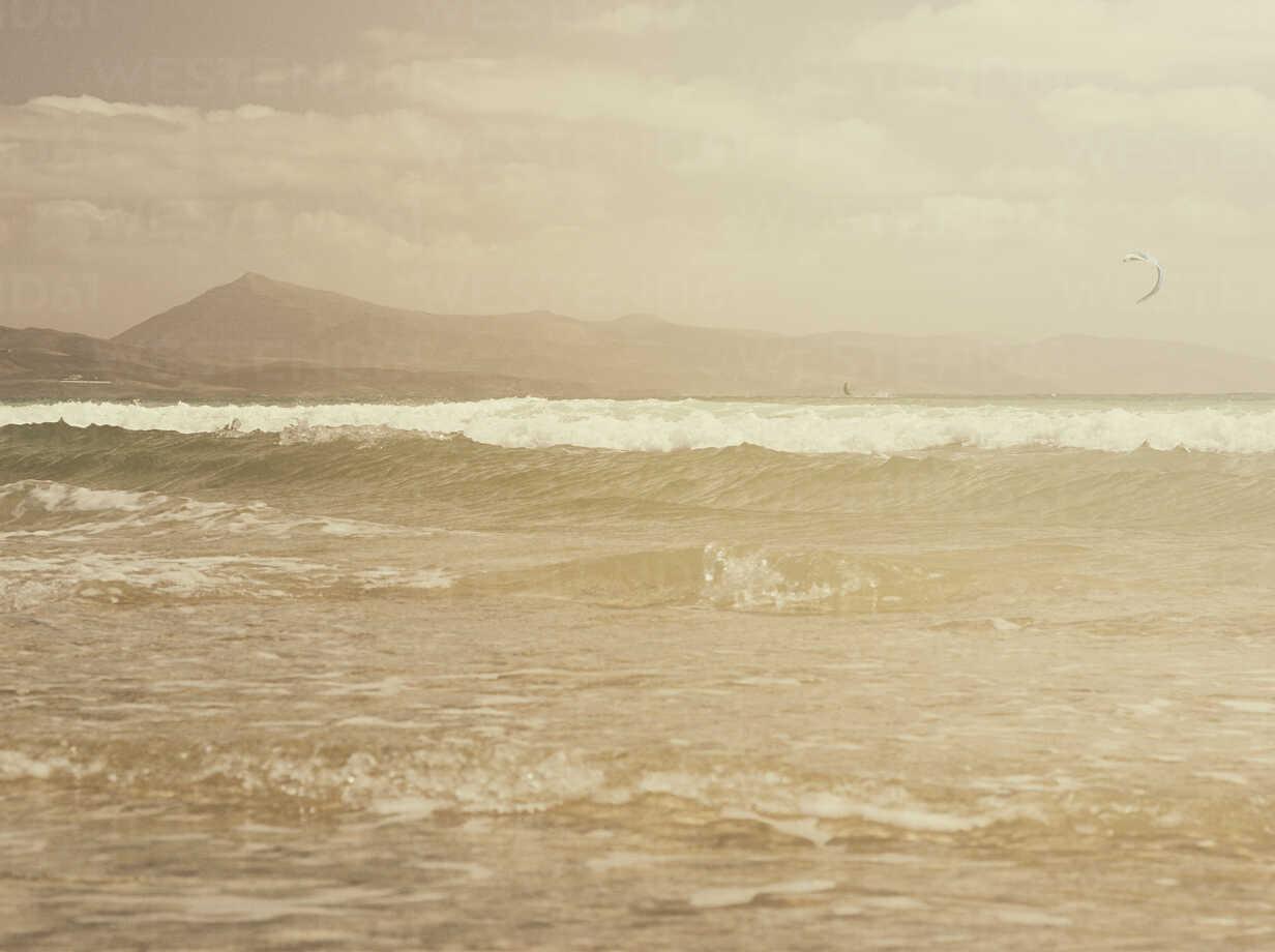 fuerteventura, spain, sea, kite surf, ocean - DSCF000152 - Daniel Schweinert/Westend61