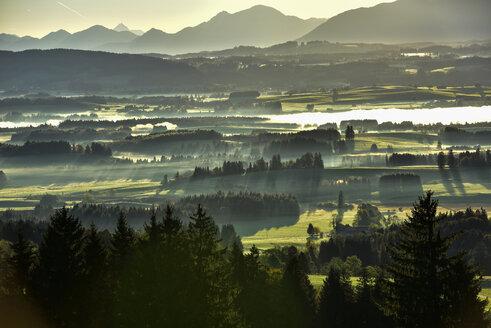Germany, Bavaria, Allgaeu, landscape in morning fog at Auerberg - FDF000079
