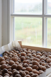 Walnuts drying in wooden box in front of a window - HAWF000495