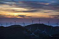 Spain, Andalusia, Tarifa, Wind farm in the evening light - KBF000239