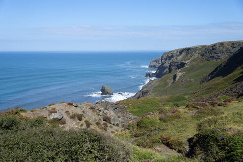 United Kingdom, England, Cornwall, Boscastle, High Cliff at Cornisch North Coast - FRF000078