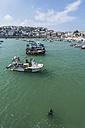 UK, England, Cornwall, St Ives, boats and seal at the coast - PAF001057