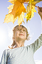 Portrait of girl with autumn leaves - OJF000066