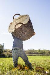Little boy lifting up a wicker basket on a meadow - OJF000069