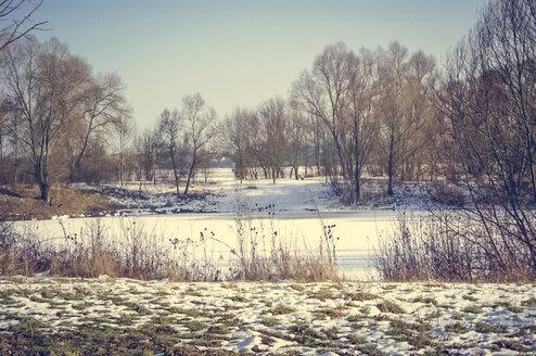 Germany, Hesse, Stockstadt am Rhein, ponds in winter - PUF000216