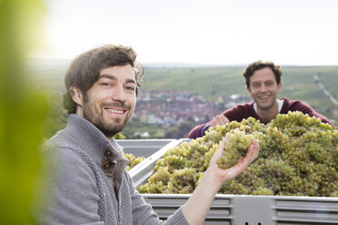 Germany, Bavaria, Volkach, two smiling winegrowers with harvested grapes - FKF000795