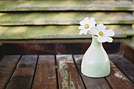 Flower vase with two white blossoms of Cosmea, Cosmos Bipinnatus, on wooden tray - ASCF000014