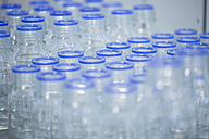 Empty glass bottles in a laboratory - SGF001003