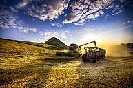 United Kingdom, Scotland, East Lothian, North Berwick, Field, Combine harvester and tractor at sunset - SMA000260