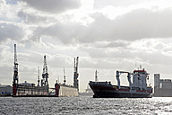 Germany, Hamburg, cargo ship on River Elbe - MIZ000717
