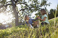 Boy and girl eating apples in meadow - RBF002024