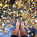 Boots in autumn leaves - LVF002335