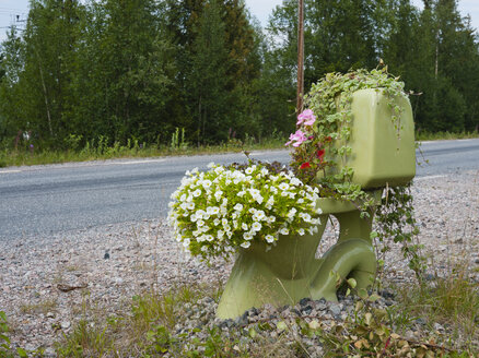 Sweden, Lapland, Norrbotten County, toilet with flowers at roadside - JBF000218