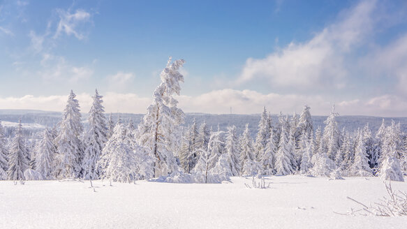 Germany, Baden-Wuerttemberg, Black Forest, snow-covered landscape - PUF000334