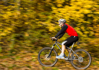Man riding mountaimbike in autumnal forest - STSF000639