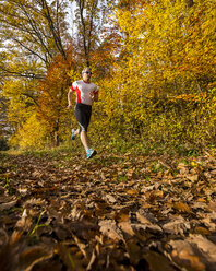 Man running in autumnal forest - STSF000640
