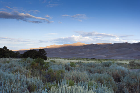 USA, Colorado, Great Sand Dunes National Park and Preserve - NNF000108