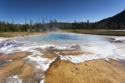USA, Wyoming, Yellowstone National Park, Upper Geyser Basin - NNF000141
