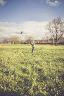 Boy flying a kite on a meadow - SARF001094