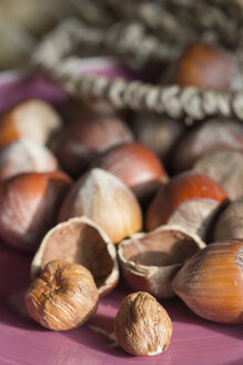 Whole and cracked hazelnuts - YFF000274