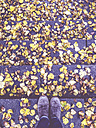 Germany, Feet of woman on stairs with autumn leaves - LVF002416