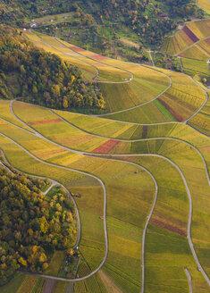 Germany, Baden-Wuerttemberg, Stuttgart, aerial view of vineyards at Rotenberg - WDF002775