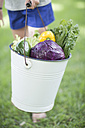 Boy holding a bucket of mixed vegetables - ZEF002763