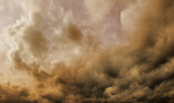 Thunderclouds - GUFF000059