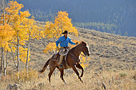 USA, Wyoming, Big Horn Mountains, riding cowboy in autumn - RUEF001333