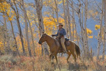 USA, Wyoming, Big Horn Mountains, riding cowgirl in autumn - RUEF001311