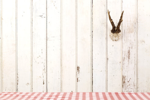 Deer antler hanging on white wooden wall - DRF001218