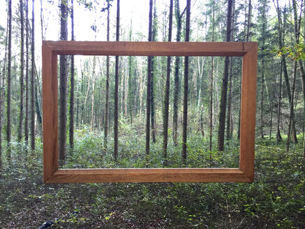 Germany, picture frame in forest - JEDF000232