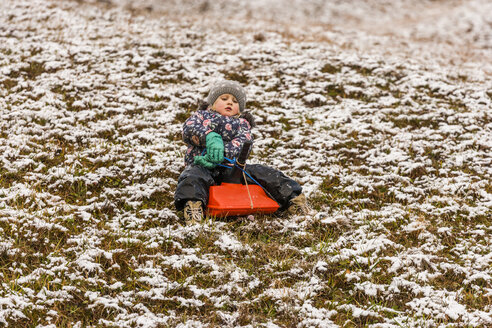 Little girl sitting on a sledge on snow covered meadow - TCF004481