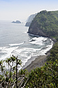 USA, Hawaii, Big Island, view from Pololu Valley at the bay with black sandy beach - BRF000894