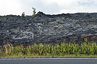 USA, Hawaii, Big Island, Volcanoes National Park, Chain of Craters Road in front of plants lava field - BRF000935
