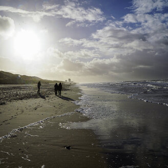 Germany, Sylt, Westerland, walkers on the beach in winter at low tide - HOHF001261